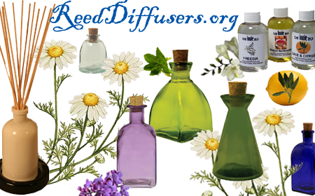 Reed Diffuser Supplies